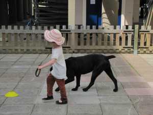 mediation animale 2